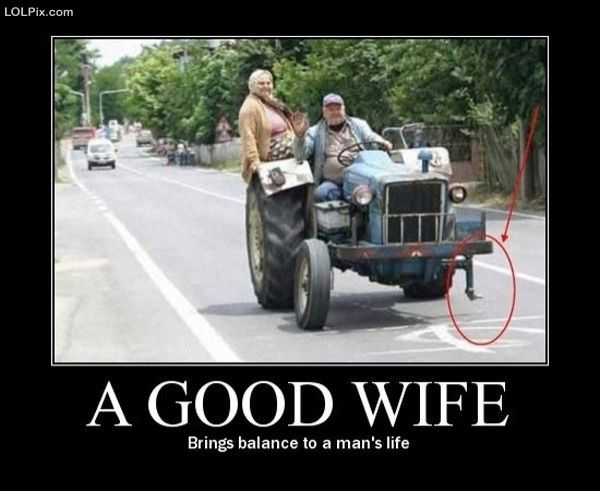Good wife - brings balance to a life of a men | source : jokes of
