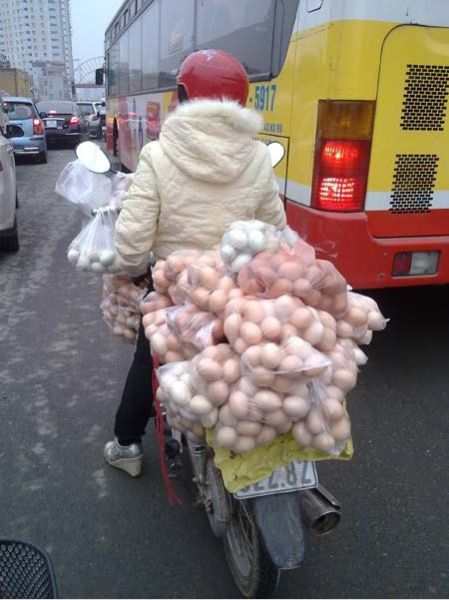 joke-funny-photo-Egg-transport.jpg
