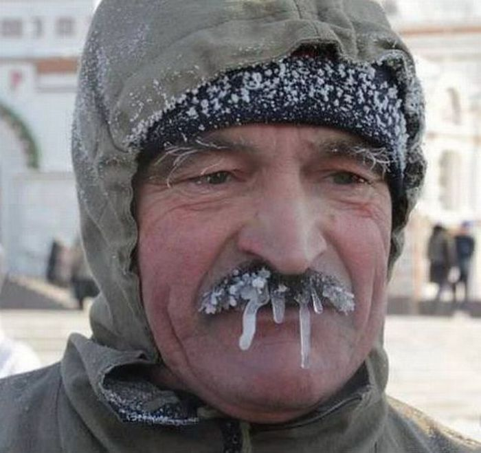 Funny Photo Of The Day For Wednesday 23 January 2013 From Site Jokes Of The Day Winter Fun For People With Moustache