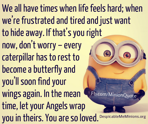 Humor Inspirational Quotes: We All Have Times When Life Feels Hard