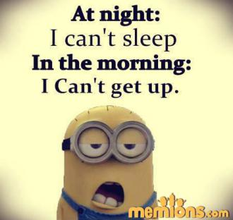 Joke For Wednesday 17 February 2016 From Site Minion Quotes Night