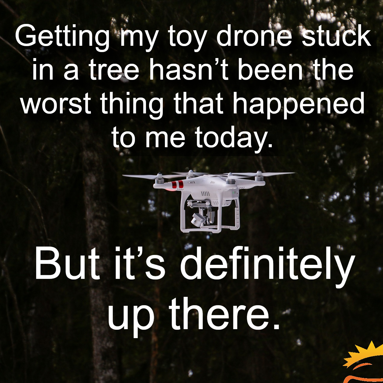 Drone stuck in a tree